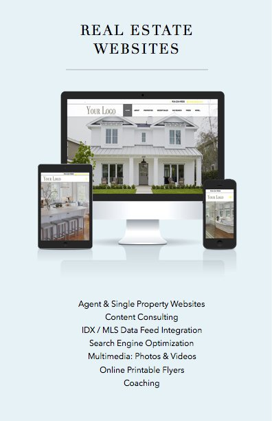Real Estate Website Design 1
